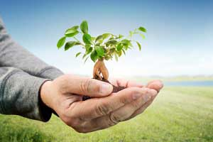 Never Waste an Opportunity: The Value of Lead Nurturing