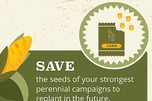 How to Reap a Hearty Subscriber Crop This Harvest Season [Infographic]