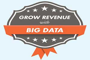 Grow Revenue With Big Data: Get Sales and Marketing on the Same Page [Infographic]