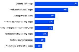 Website Optimization: Marketers' Top Goals and Areas of Focus