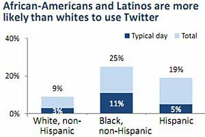 Twitter Use Reaches 13%, Strongest Among Minority Groups