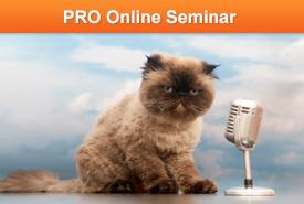 Discover Your Presentation Persona