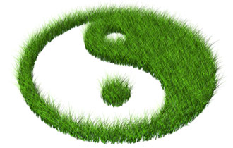 The Tao of Green Marketing