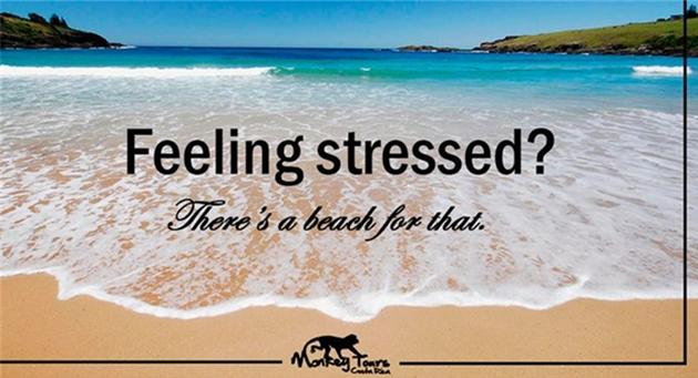 a tropical beach with text about stress for a monkey tours advertisement