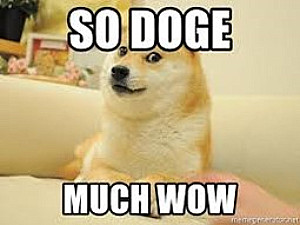 So doge much wow