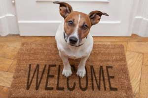 Eight Steps to Setting Up a Successful Email Marketing Welcome Series