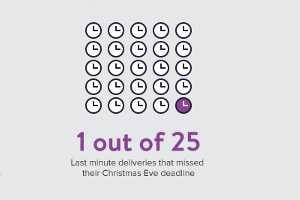The 2016 Retail Holiday Delivery Experience [Infographic]