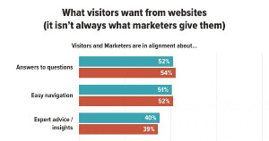 B2B Websites: What Visitors Value vs. What Marketers Value