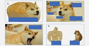 Four Marketing Elements Behind the Rise of Dogecoin
