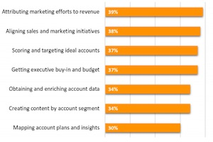 Account-Based Marketing Channels, Priorities, and Challenges