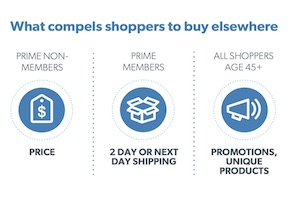 The Demographics and Motivations of Amazon Shoppers [Infographic]