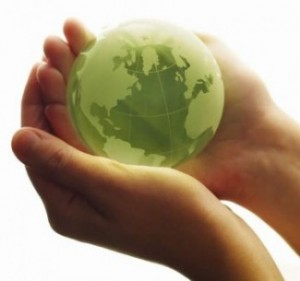 5 Simple Rules for (Really) Going Green