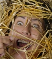 How to Find ROI in the Multichannel Marketing Haystack