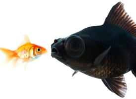 Take 10: Three Ways to Outsmart Your Biggest Competitors
